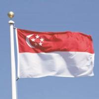 新加坡搬家服务-国际搬家到新加坡,中国到新加坡私人物品运输